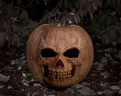pumpkin skull free wallpapers mmw angry