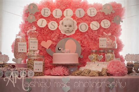 themes for girl 1st birthday party kara s party ideas pink elephant 1st birthday party kara