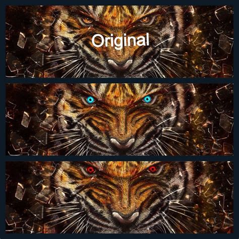 tiger color a up of the tiger eye color change awesome random