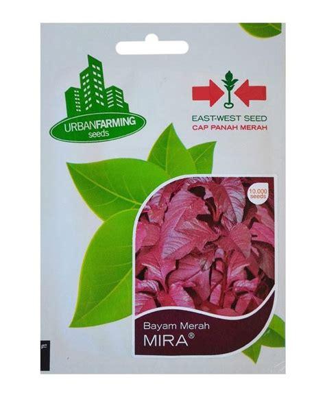 Benih Brokoli Cap Panah Merah benih bayam merah mira panah merah jualbenihmurah
