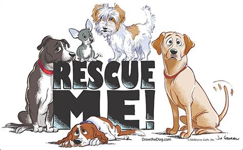 the s pets 7 signs of a reputable rescue