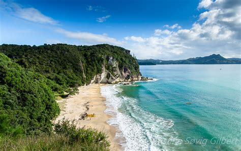 new best new zealand island beaches lonely bay