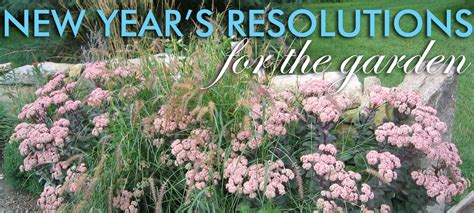 new year garden grounded design by rainer new year s resolutions