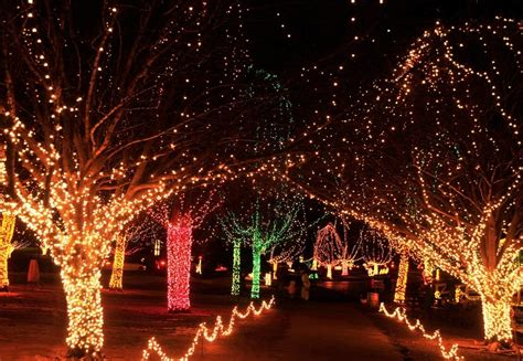 festival of lights chicago 2017 things to do in phoenix this weekend dec 1st dec 3rd