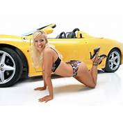 Cars Showroom Sexy And Bad Girls