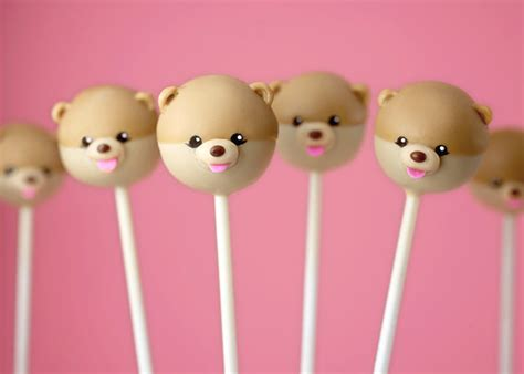 pomeranian pop out adorable cake pops of grumpy cat and boo the pomeranian designtaxi
