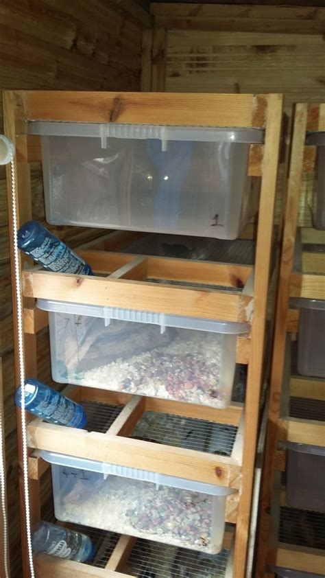 rodent racks billingham county durham pets4homes