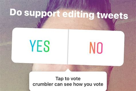 No Poll Sticker On Instagram instagram adds polling stickers to stories the verge