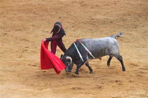 imagenes perronas de toros el constitucional estudia negar a catalu 241 a las