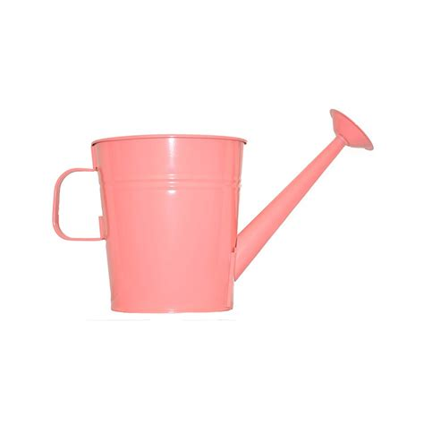 Watering Can Planter by 1 Gallon Watering Can Planter Pride Garden Products