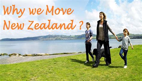 Can You Move To New Zealand With A Criminal Record Work Balance In New Zealand