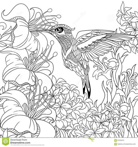 coloring pages for adults hummingbird 21 best coloring book images on pinterest coloring books