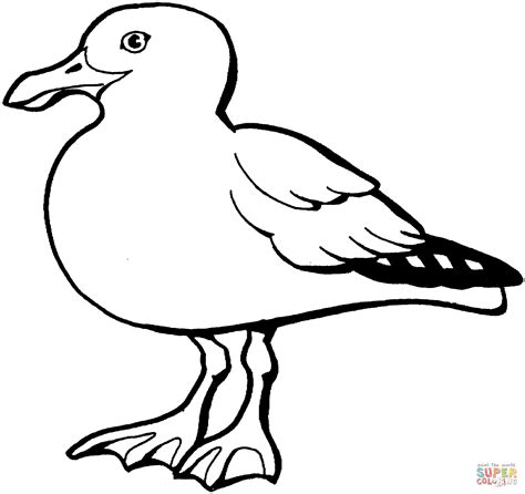 Seagull Coloring Page california gull coloring page free printable coloring pages