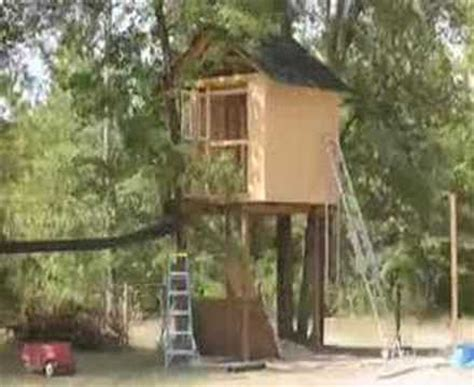 treehouse time lapse