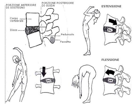 dolore alla gabbia toracica schiena sciatica cosa fare demata