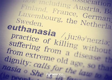 Philosophy Papers On Euthanasia by Euthanasia Pros Essay Nouvelle Zelande Resume Writing