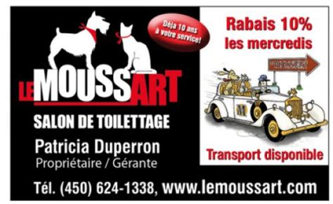 tattoo patriote quebec tonte et toilettage 224 laval toilettage bo bain plus