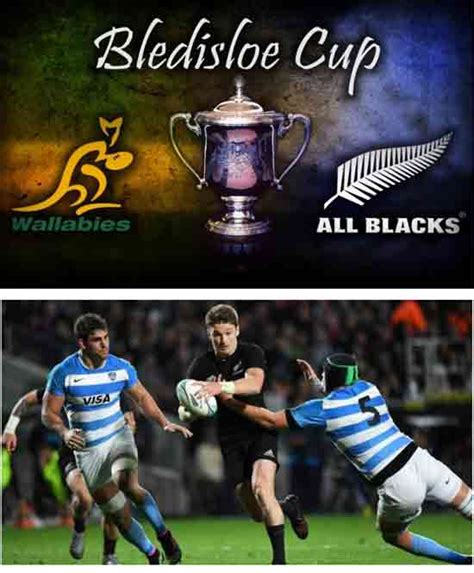 catch us if you can elanka all blacks throw down the gauntlet saying catch