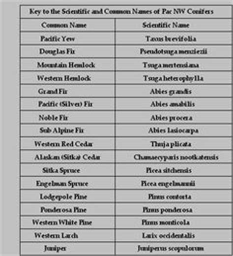1000 images about scientific names on pinterest names unique names and search