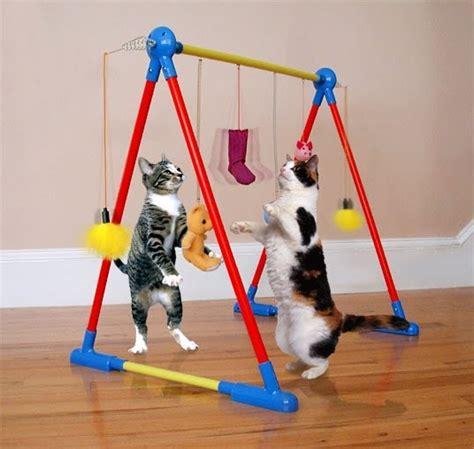 Kandang Kucing Gelap perlengkapan kucing