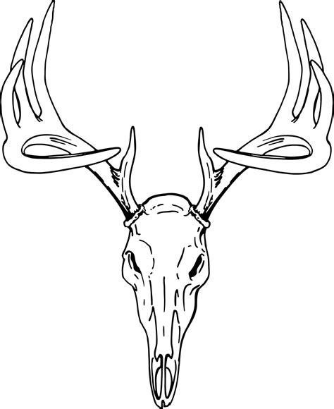 deer tracks coloring pages buck clip art european mount deer skull clip art deer