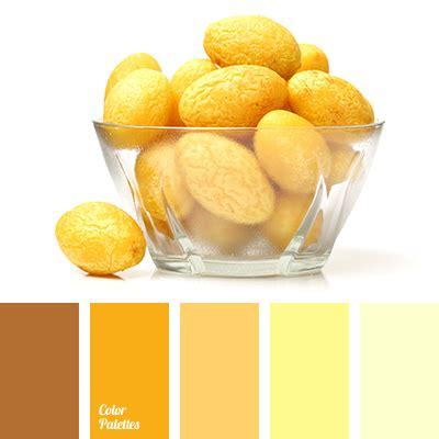light lemon yellow color bright yellow brown yellow color of ocher yellow