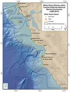 shark attacks california map simon news 187 shark attack summaries 2017 2011 2007