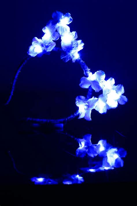 Ear Pic Led Korek Kuping Led blue led light up flower cat ears headband cat headband ears headband led cat ears