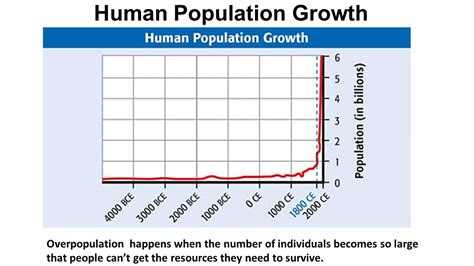 section 5 3 human population growth do now in your teams discuss environmental problems then