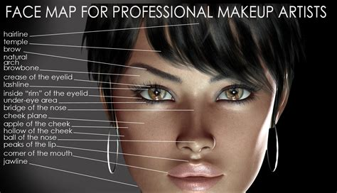 how to be an professional artist a face map for professional makeup artists amazing