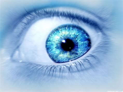 Wallpaper Blue Eyes Hd | blue eye wallpaper high definition wallpapers high