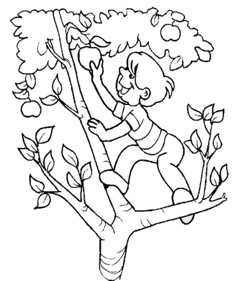 apple orchard coloring page apple orchard of coloring pages to print coloring pages