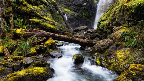mountain river waterfall black cliffs green moss fallen