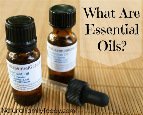 Essential Oils by Essential Oils Images