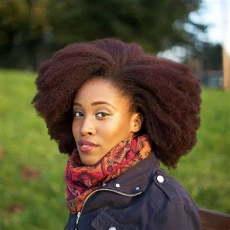 thick coiled hair pin by corrine mcpherson on 4c natural hair style icon