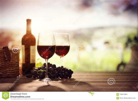 vineyard tuscany stock photos royalty free images
