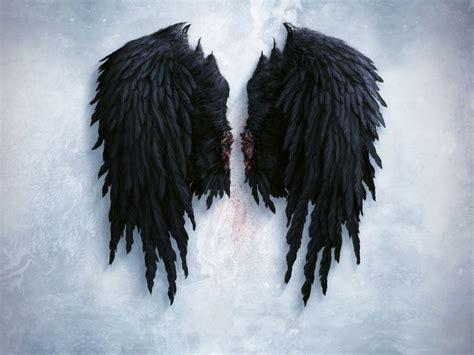 alas negras alas negras angeles
