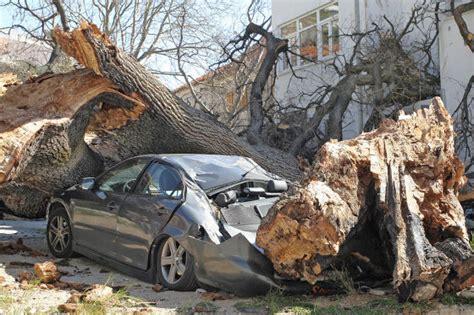 Auto Kaufen Was Tun by Unfall Totalschaden Was Tun Autobild De