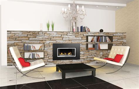 glass door fireplace insert napoleon gdi 30g direct vent gas fireplace insert with