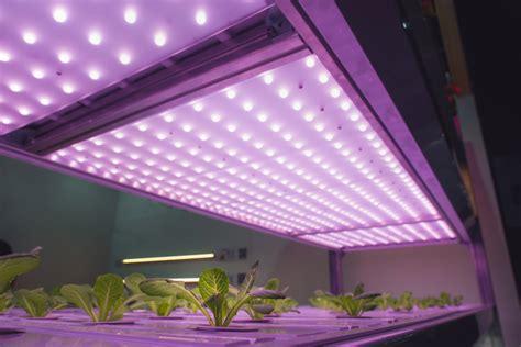 simple diy indoor grow lights  start seeds