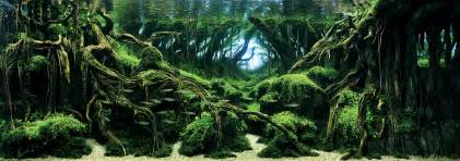japanese aquascape awesome aquariums winners of the 2015 international aquatic plants layout contest colossal