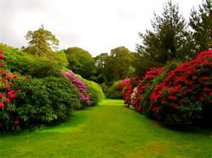 muckross estate proverbs 23 4 5 beautiful gardens summer setting