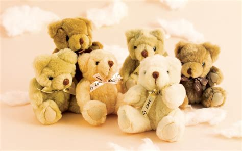 full hd video teddy bear 20 full size cute teddy bears hd wallpapers