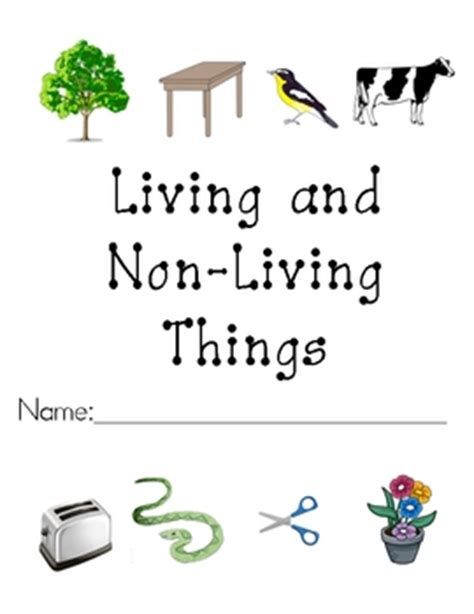 Living And Nonliving Things Worksheets Pdf by All Worksheets 187 Living And Nonliving Things Worksheets
