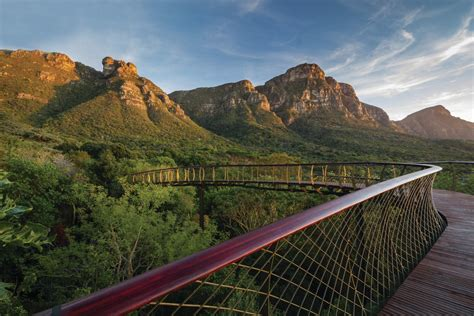 Kirstenbosch National Botanical Garden Cape Town Innovative Detail Architects Gives Visitors A Bird S Eye View Of Cape Town
