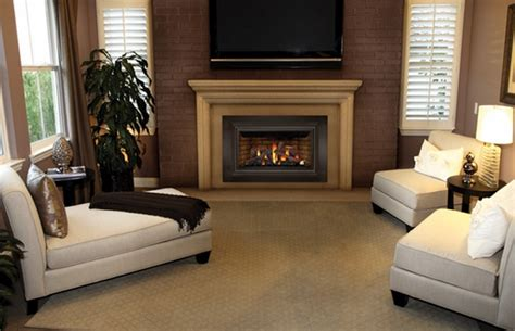 direct vent gas fireplace insert reviews napoleon gdizc direct vent gas fireplace insert gdizc nsb