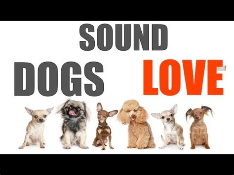 sound dogs sound dogs all time hq mp3gratiss