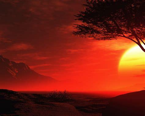 red night sky  summer beautiful romantic hd desktop wallpaper wallpaperscom