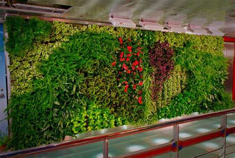 how to make your own vertical garden 14638737