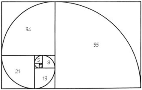 finally got how to create spiral number pattern program the golden ratio in photography icon photography school
